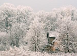 Ziemas ainava - Ziemas kartiņa 24