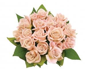 Kartiņas ar ziediem 40
