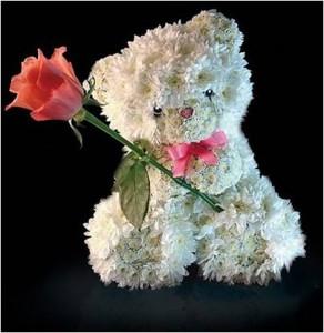 Lācēns ar rozi