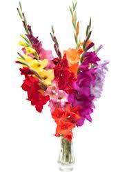 Kartiņas ar ziediem 44