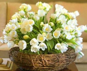 Kartiņas ar ziediem 25