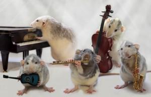 Peļu orķestris - Kartiņas ar dzīvniekiem 18