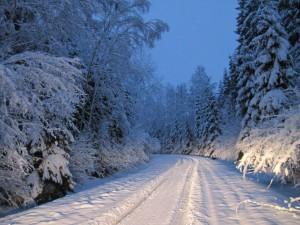 Ziemas kartiņa 20