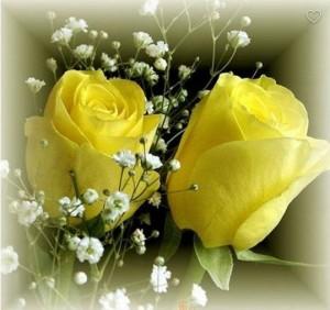 Kartiņas ar ziediem 86