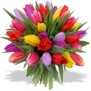 Kartiņas ar ziediem 26