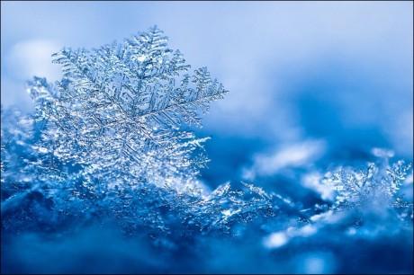 Ziemas kartiņa 28