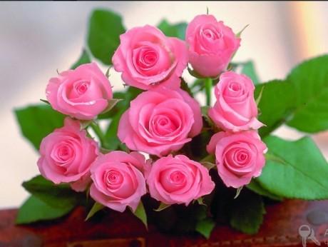 Kartiņas ar ziediem 38