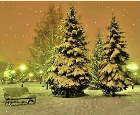 Ziemas kartiņa 21