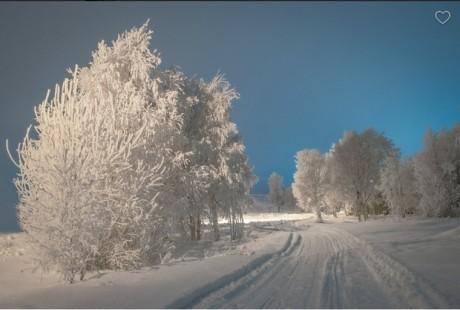 Ziemas kartiņa 30