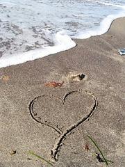 Sirds smiltīs - Romantiskas kartiņas  15