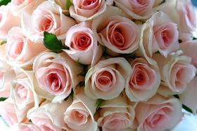 Rožu pušķis - Kartiņas ar ziediem 1