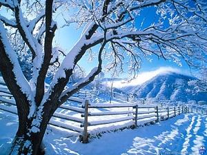 Ziemas ainava - Ziemas kartiņa 1