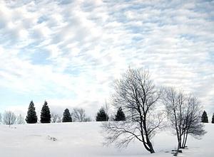 Ziemas ainava - Ziemas kartiņa 8